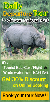 Rhino Land Chitwan- Chitwan National Park